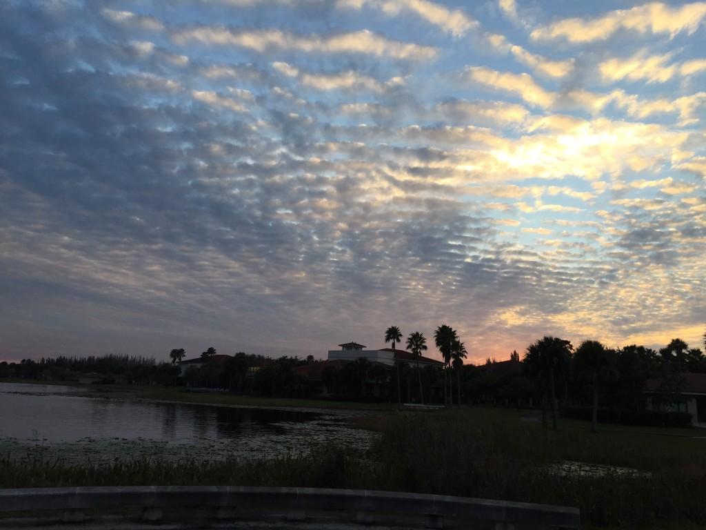 """Toda Lake"" at Florida Nature & Culture Center. photo: April Doner, 2014"