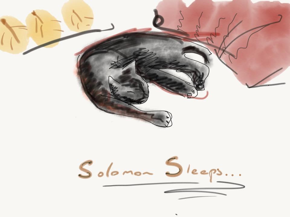 SolomonSleeps